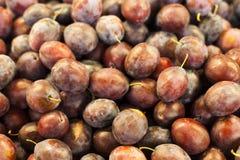 Ameixas vermelhas orgânicas fotografia de stock
