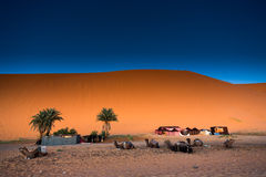 Amel Марокко ¡ пустыни Сахары Ð, Merzouga Стоковые Фотографии RF