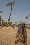 Amel sitting near Bedouin Oasis Royalty Free Stock Photos