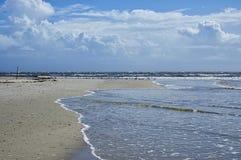 The Amelia Island, Fernandina Beach, Florida, USA. The Amelia Island Florida, Fernandina Beach is occupied by wild birds, Florida, USA stock photography