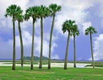Amelia Island, la Floride Photographie stock