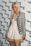Amelia Lily Stock Photography