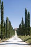 Amelia (Ombrie, Italie) - vieux villa et cyprès Images stock