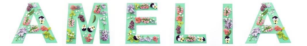 Amelia Word Made des fleurs de papier et de ressort Images stock