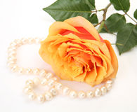 Amende rose et perles Photographie stock