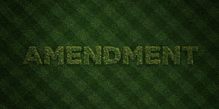 AMENDMENT - fresh Grass letters with flowers and dandelions - 3D rendered royalty free stock image Stock Photos