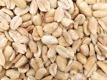 Amendoim Fotografia de Stock