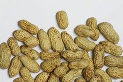 Amendoim Imagem de Stock