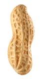 Amendoim Fotografia de Stock Royalty Free