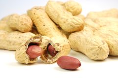 Amendoim Imagens de Stock Royalty Free