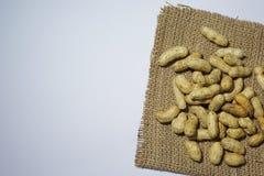 Amendoim dos feijões Imagem de Stock Royalty Free