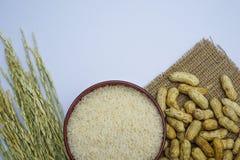 Amendoim dos feijões Fotografia de Stock