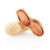 Amendoim e seção secados Imagens de Stock Royalty Free