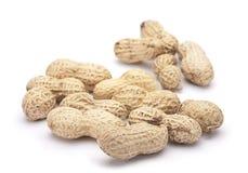 Amendoim no escudo Imagem de Stock