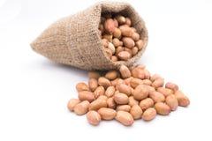 Amendoim no saco do Gunny Imagens de Stock