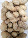 Amendoim no shell Fotografia de Stock Royalty Free