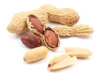 Amendoins foto de stock royalty free