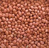 Amendoins 2 Imagem de Stock