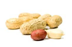 Amendoins Fotografia de Stock