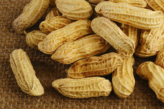 Amendoins Fotos de Stock