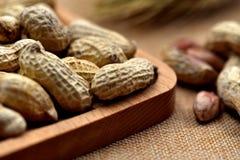 Amendoins Foto de Stock