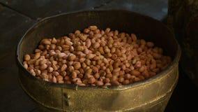 Amendoins classificados frescos e limpos, Bagan, Myanmar video estoque