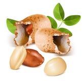 Amendoins com núcleos Imagens de Stock Royalty Free