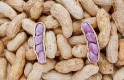 Amendoins cozinhados Fotografia de Stock Royalty Free