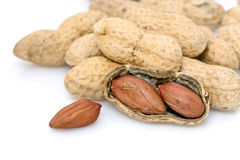 Amendoins crus nos escudos   imagem de stock royalty free