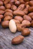Amendoins descascados Foto de Stock Royalty Free