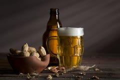 Amendoins e cerveja imagem de stock