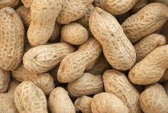 Amendoins em seu fundo textured shell do alimento Fotos de Stock