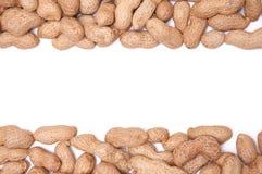 Amendoins em uma casca em um isolado branco do fundo Fotos de Stock