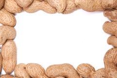 Amendoins em uma casca em um isolado branco do fundo Foto de Stock