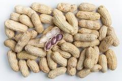 Amendoins fervidos Foto de Stock Royalty Free