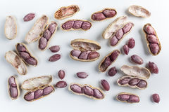 Amendoins fervidos Foto de Stock