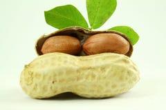 Amendoins inteiros e descascados com close up das folhas Fotografia de Stock
