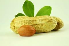 Amendoins inteiros e descascados com close up das folhas Fotos de Stock Royalty Free