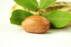 Amendoins inteiros e descascados com close up das folhas Fotografia de Stock Royalty Free