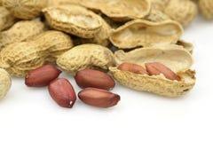 Amendoins isolados em um fundo branco Imagem de Stock Royalty Free