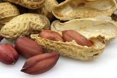 Amendoins isolados em um fundo branco Imagem de Stock