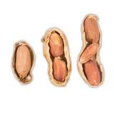 Amendoins isolados no fundo branco Imagens de Stock Royalty Free