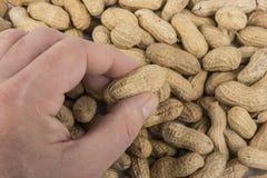 Amendoins na tabela Fotos de Stock