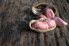 Amendoins nos escudos imagens de stock