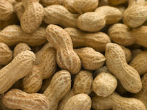Amendoins nos escudos Imagem de Stock Royalty Free