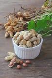 Amendoins nos escudos Fotos de Stock Royalty Free