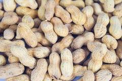 Amendoins nos escudos no branco foto de stock royalty free