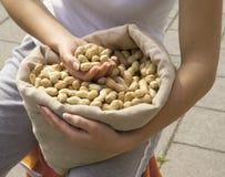 Amendoins orgânicos no saco Imagem de Stock