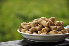 Amendoins pretos Fotos de Stock Royalty Free