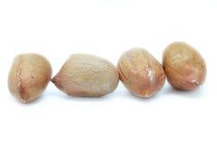 Amendoins processados isolados Fotos de Stock Royalty Free